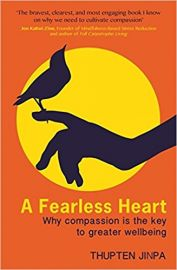 A FEARLESS HEART by THUPTEN JINPA why compassion is the key to greater wellbeing