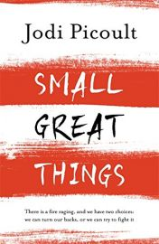 SMALL GREAT THINGS : There is a fire raging, and we have two choices: we can turn our backs, or we can try to fight it