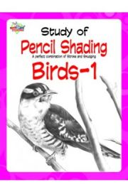 STUDY OF PENCIL SHADING : A Perfect Combination of Stroke and Smudging - BIRDS - 1