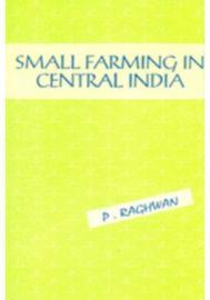 Small Farming in Central India