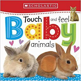 Scholastic: TOUCH AND FEEL BABY ANIMALS