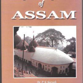Temple Sculptures of Assam - Dr. P.S. Suryah