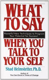 WHAT TO SAY WHEN YOU TALK TO YOUR SELF by SHAD HELMSTETTER Powerful New Techniques to Program Your Potential For Success!