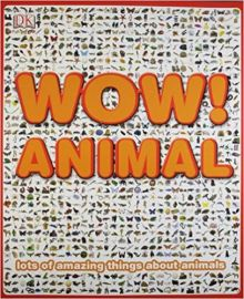 WOW ANIMALS LOTS OF AMAZING THINGS ABOUT ANIMALS