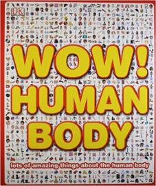 WOW HUMAN BODY LOTS OF AMAZING THINGS ABOUT THE HUMAN BODY